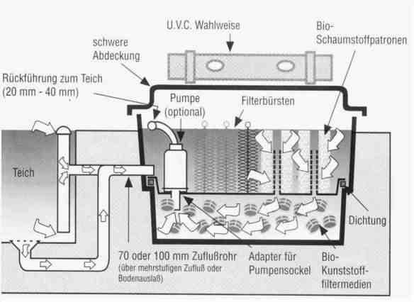 Teich reinigen ohne pumpe for Teich fische ohne filter